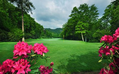 A Summer Day at Our Private Country Club in Banner Elk, NC