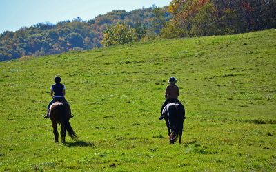 Equestrian Center in North Carolina: Elk River Club